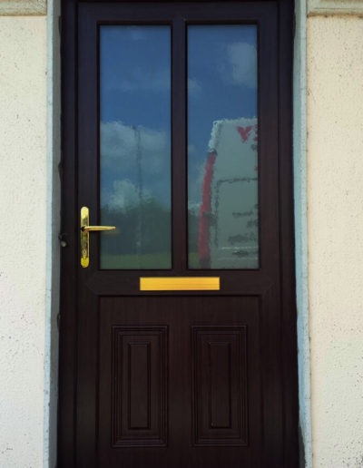 Rosewood pvc door
